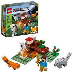 Damaged Box: LEGO Minecraft Set 21162!